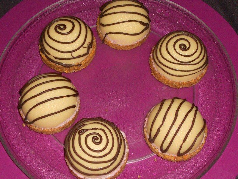 Dôme de chocolat, mousse framboise, coeur de lemond curd sur un palet de Graham crakers dans entremet ,bûche(16) dscn0896-copier